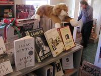 Bookstores_002